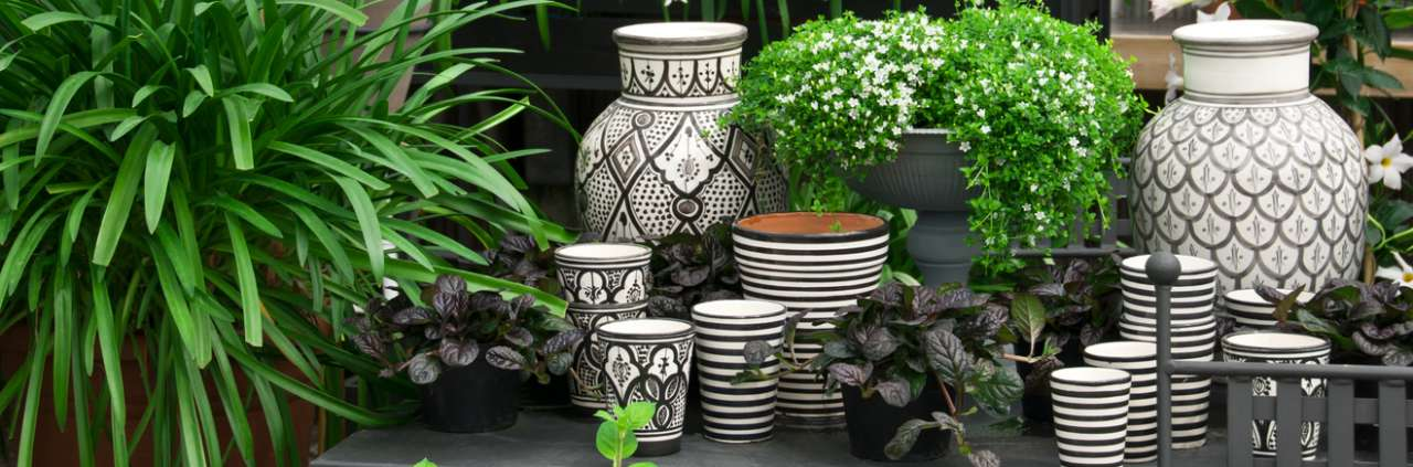 Keramieken potten - Het Bloemenhuis Beveren