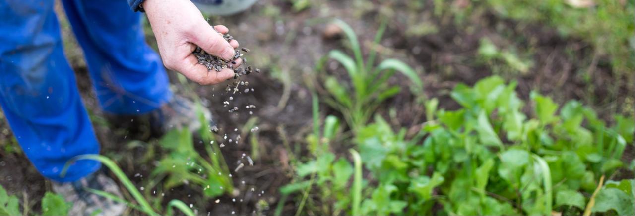 Speciale meststoffen voedingstoffen - Het Bloemenhuis Beveren